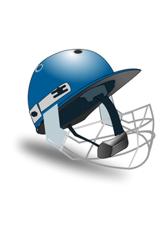 Image cricket helmet