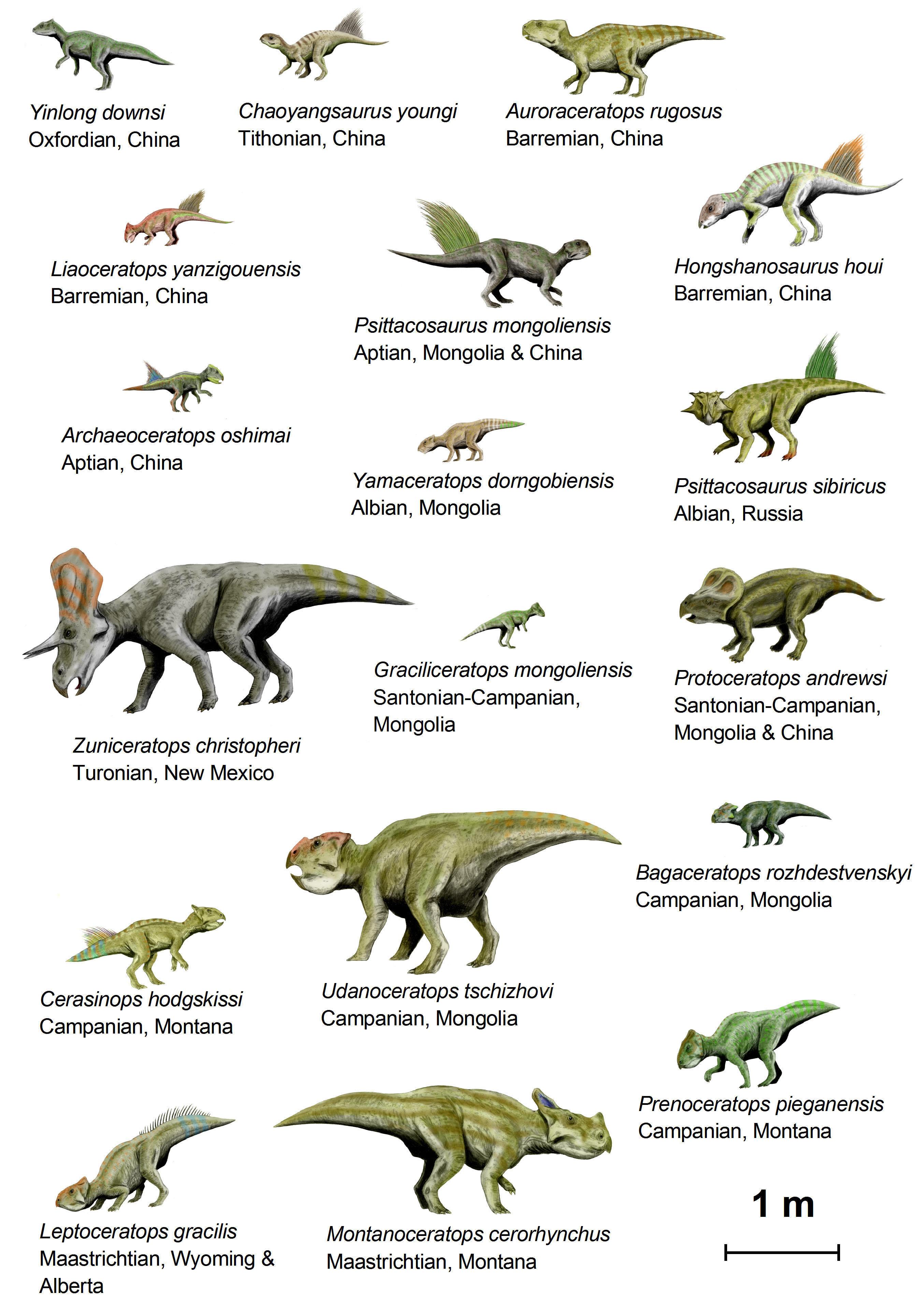 Download large image - Liste de dinosaures ...