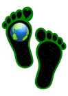 Image ecological footprint