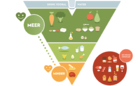 Images food triangle - part 1