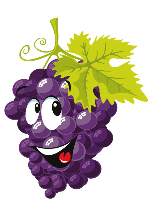 Image fruit - grapes
