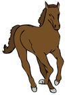 Image horse
