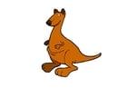 Image kangaroo
