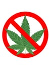 Image marihuana prohibited