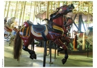 Photo merry-go-round