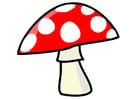 Image mushroom