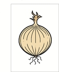 Images onion