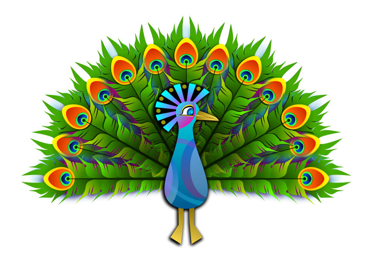 Image peacock