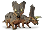 Images Pentaceratops dinosaur
