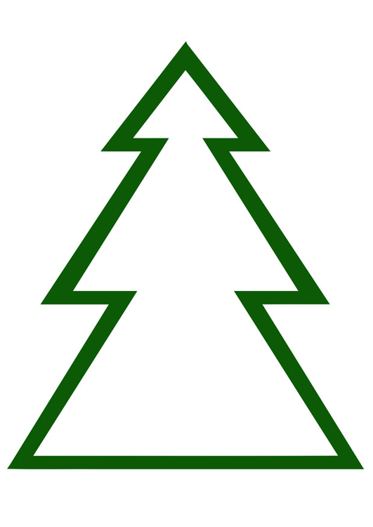 image pine tree  free printable images  img 20403