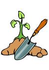 Image planting a tree