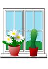 Image plants
