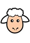 Image sheep