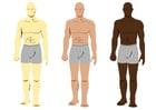 Image skin colours