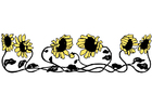 Image sunflowers