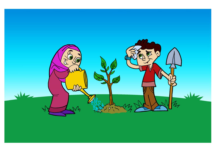 Image to plant a tree