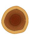 Image tree rings