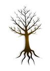 Image tree trunk