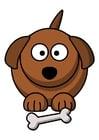 Image z1-dog