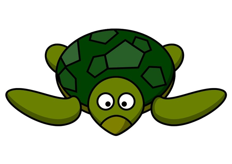 Image z1-sea turtle