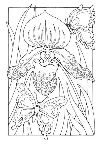 Раскраски страницу лилии с бабочками