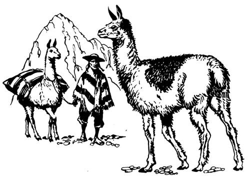 Cartoon Brown Llama Coloring Page | cartoon-animals