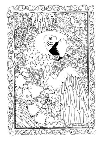 Раскраски страницу попугай