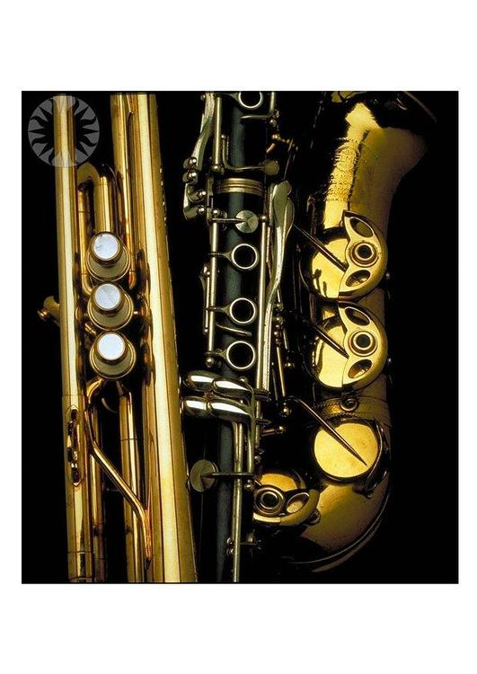 brass and woodwind instruments