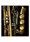 Photos brass and woodwind instruments