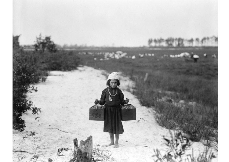 Photo child labour 1910