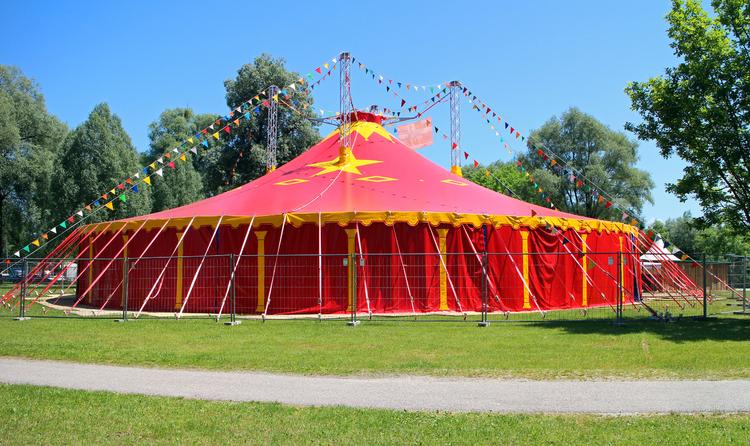 Photo circus tent & Photo circus tent - img 28847.