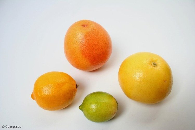 Photo citrus fruit