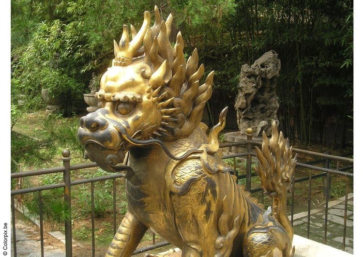 Photo dragon, Forbidden City