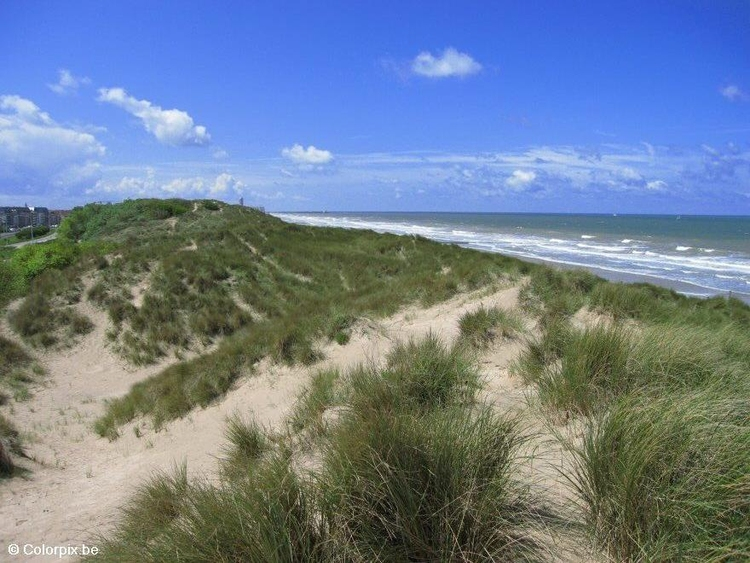Photo dunes sea coast 1