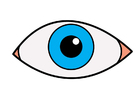 Image eye