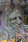 Photo fairy tale tree