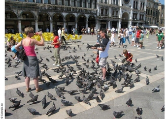 Photo feeding the pigeons at San Marco Square
