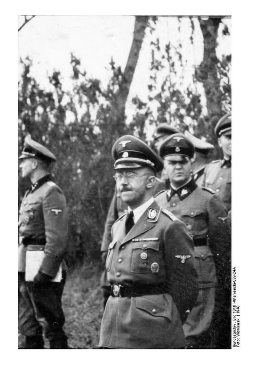 Photo France, Himmler with ss-weapon officers