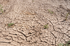 Photo global warming
