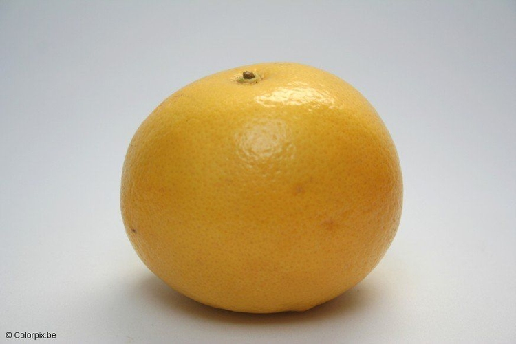 Photo grapefruit