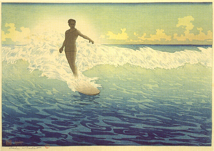 Photo 'Hawaii, The Surf Rider'
