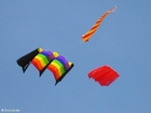 Photo kites 2