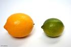 Photo lemon and lime