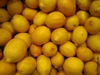 Photo lemons