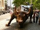 Photo New York - Wall Street bull