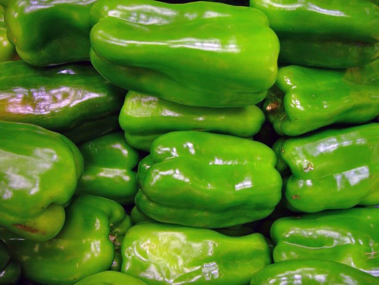 Photo paprikas - green peppers