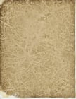 Photo parchment