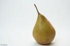Photo pear