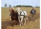 Photo plowing farmer