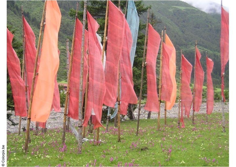 Photo prayer flags